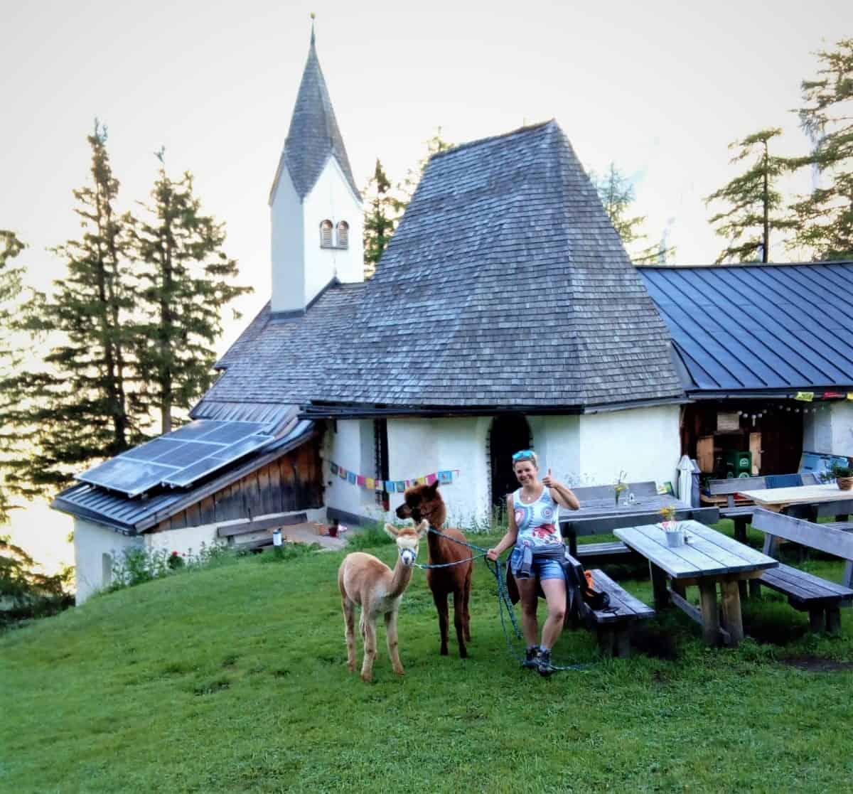 Gschnitzer-Alpaka-Sankt-Magdalena-Gschnitz Wanderungen