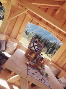 Gschnitzer_Alpaka-Alpakas-Wanderungen-Tirol-03-225x300 Wanderungen