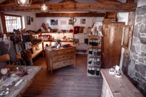 Gschnitzer_Alpaka-Alpakas-Wanderungen-Tirol-11-scaled Alpakas Fotos